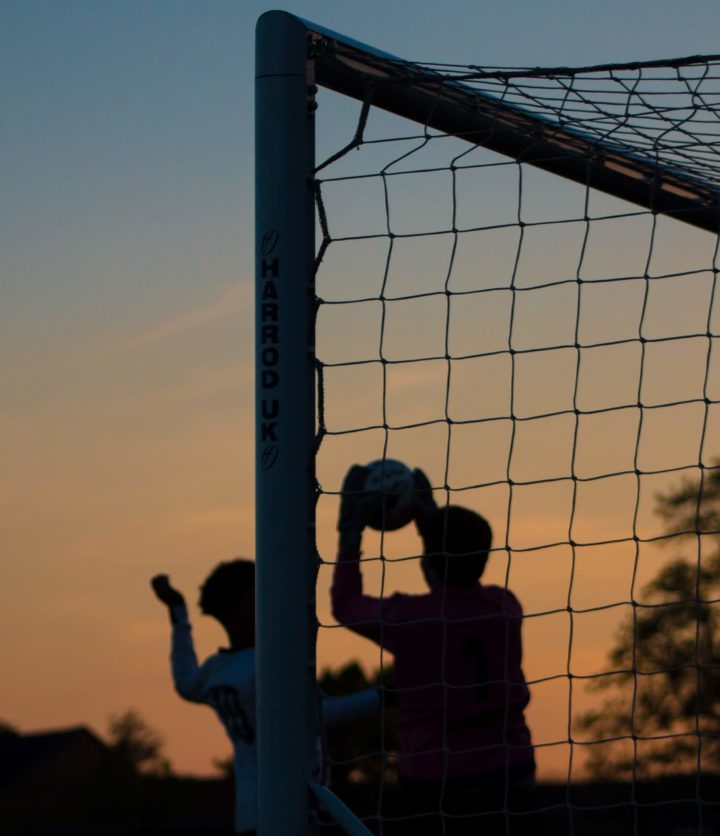 Concussion and sport